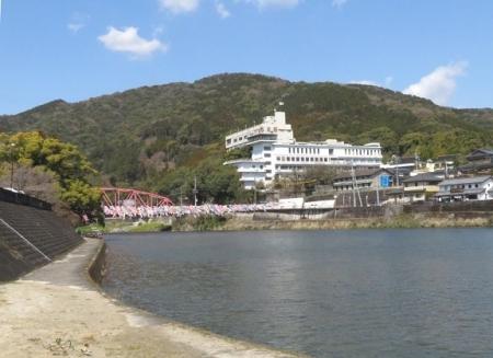 川上峡鯉幟 2019-03-23 145