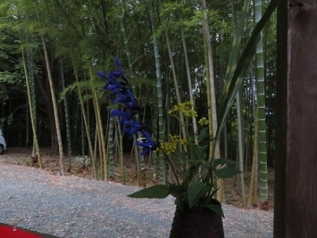 かぐや姫の森 野点 2019-06-02 017