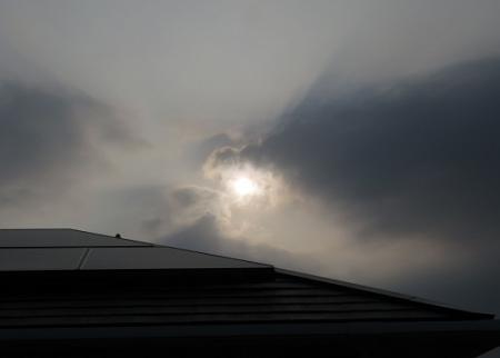 朝の太陽くちなしの花 2019-06-16 013