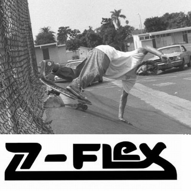z-flex2[1]3