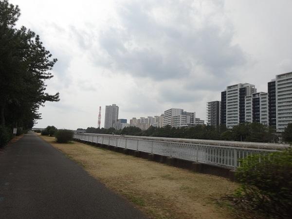 190316花見川と稲毛 (6)