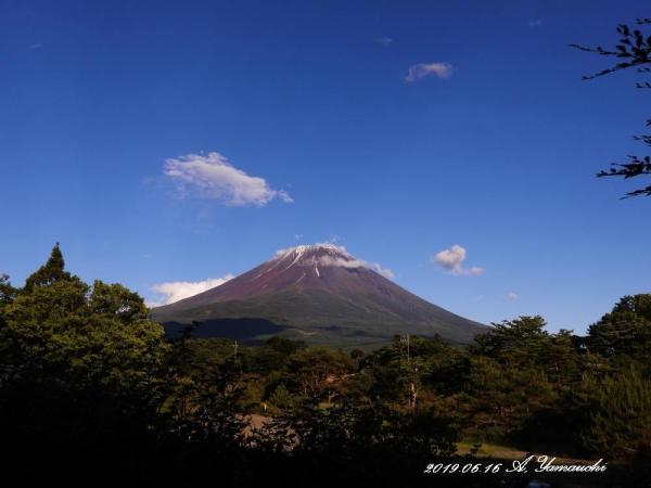 富士河口湖町の天徳院前にて
