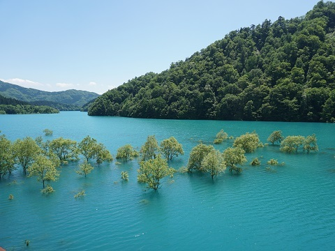 5宝仙湖1