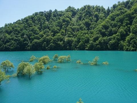 6宝仙湖2