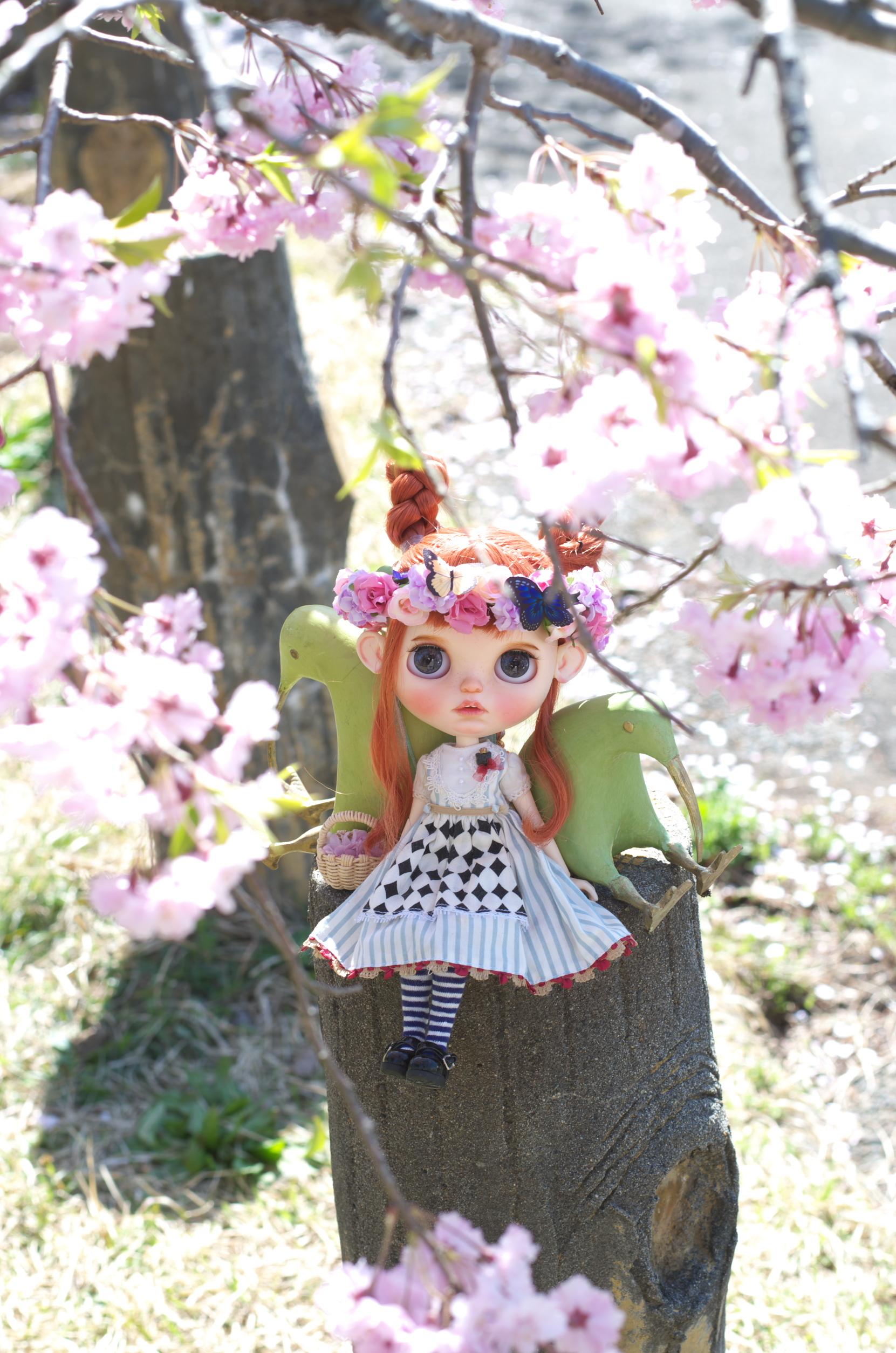 桜を見るのははじめてだから