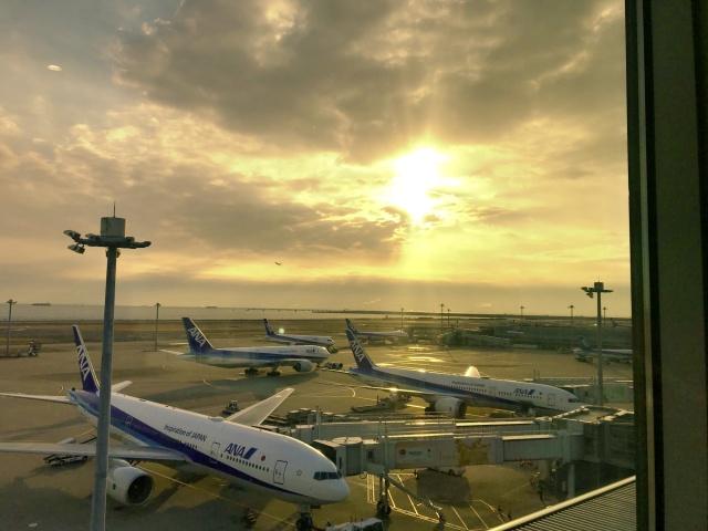 羽田→福岡フライト (1)