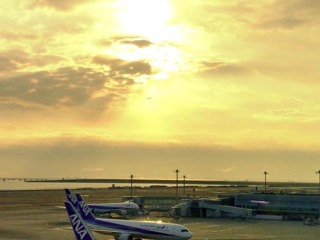 羽田→福岡フライト (2)