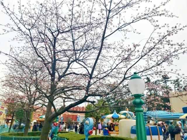 東京ディズニーリゾート35周年 (4)