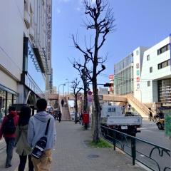 濃菜麺 井の庄 荻窪店 (2)