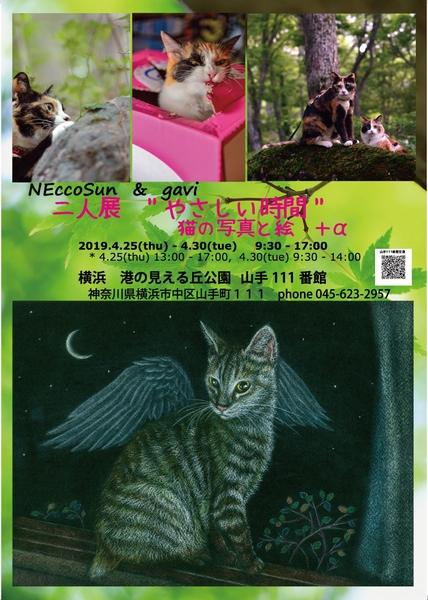 190425_Yamate111S.jpg