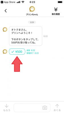 pring(プリン)新規登録⑪