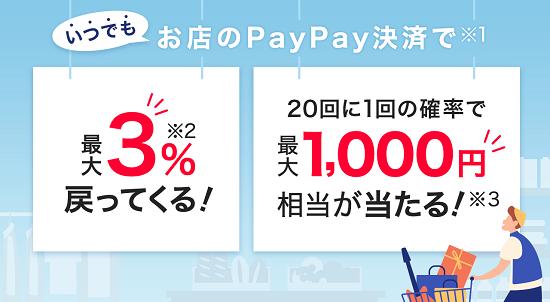PayPay(ペイペイ)常設内容
