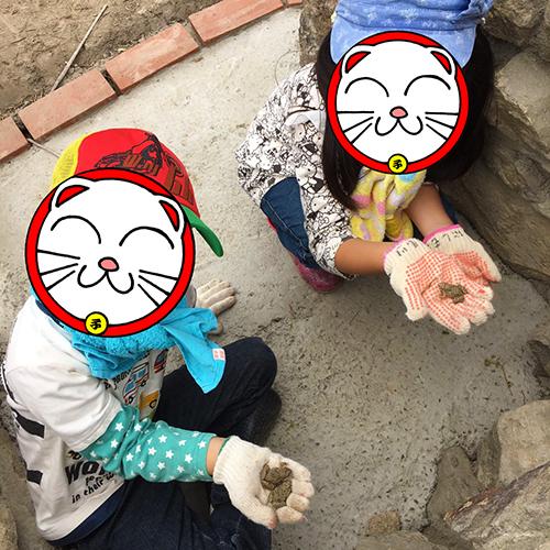わが子のお友達と一緒にイチゴ狩り♪⑦