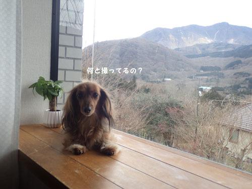 morinoakari59_20190508183922f64.jpg