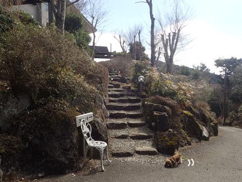 morinoakari69.jpg