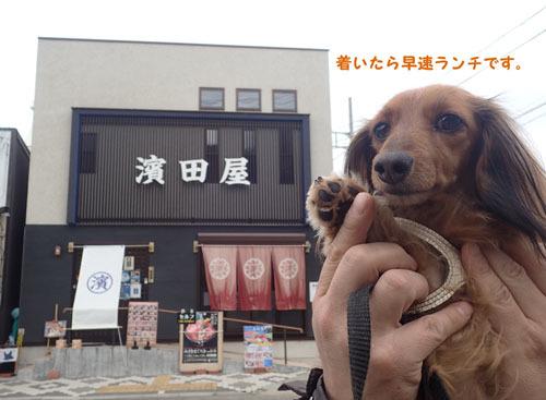 morinoakari76.jpg