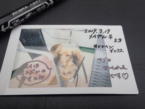morinoakari85.jpg