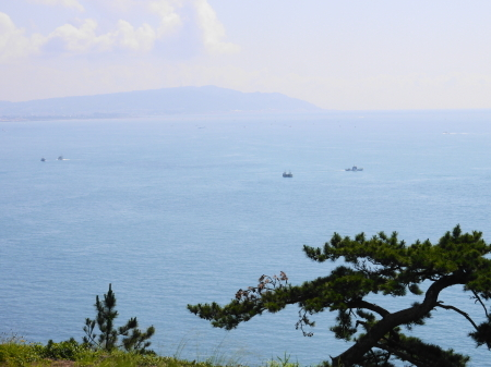 朝の駿河湾