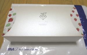 ANA2019春いちごのチョコレートBOX