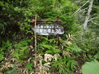 DSC05302.jpg