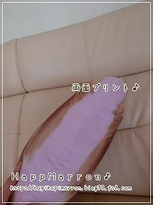 マロンクッション2