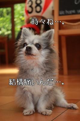 s-IMG_0915.jpg