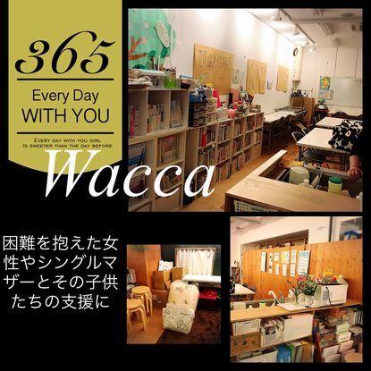 wacca羽毛3