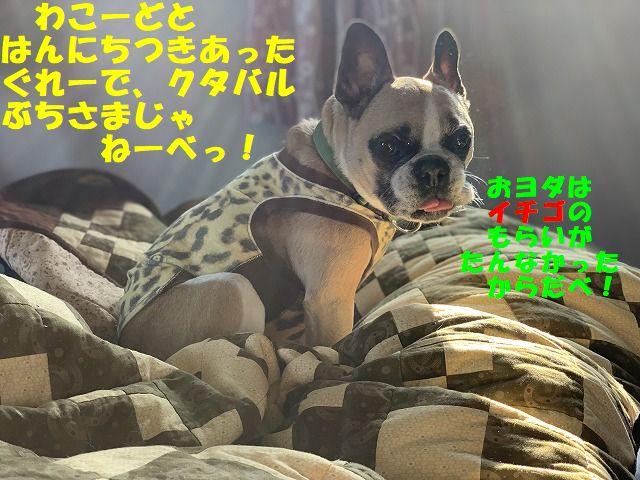 IMG_0553(Edited).jpg