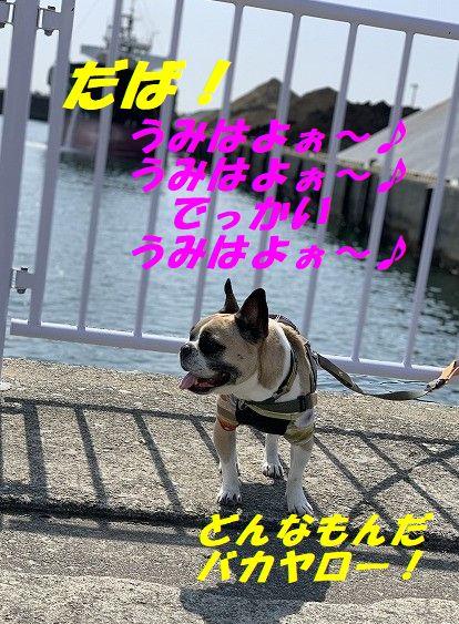 IMG_1316(Edited).jpg