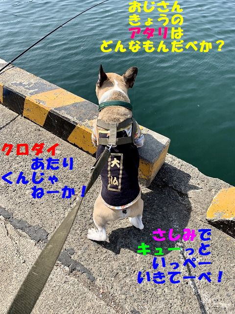 IMG_1318(Edited).jpg