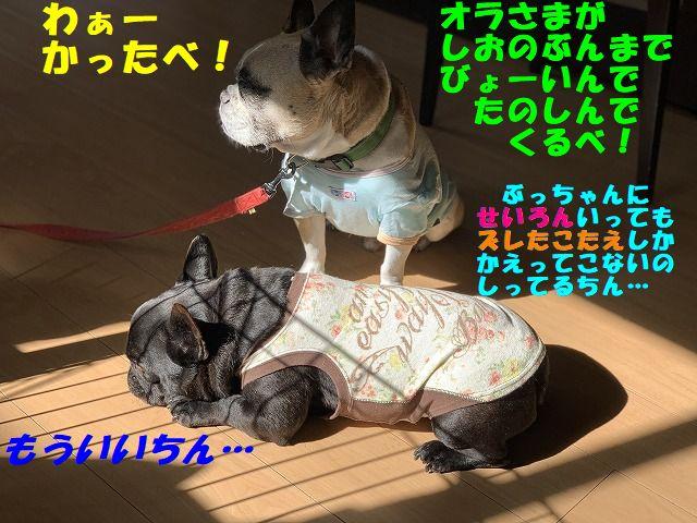 IMG_1424(Edited).jpg