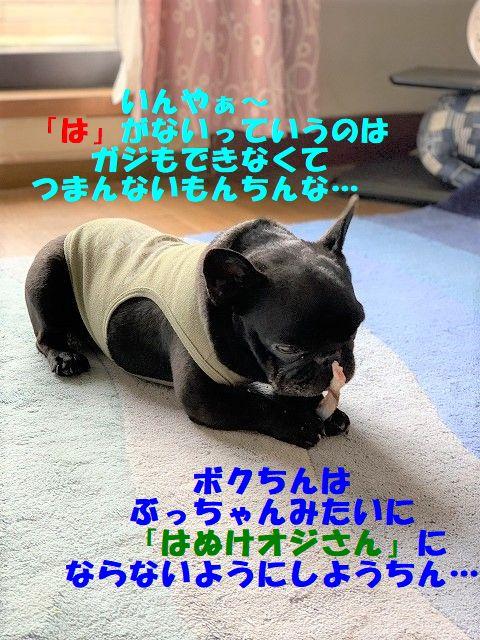 IMG_2685(Edited).jpg
