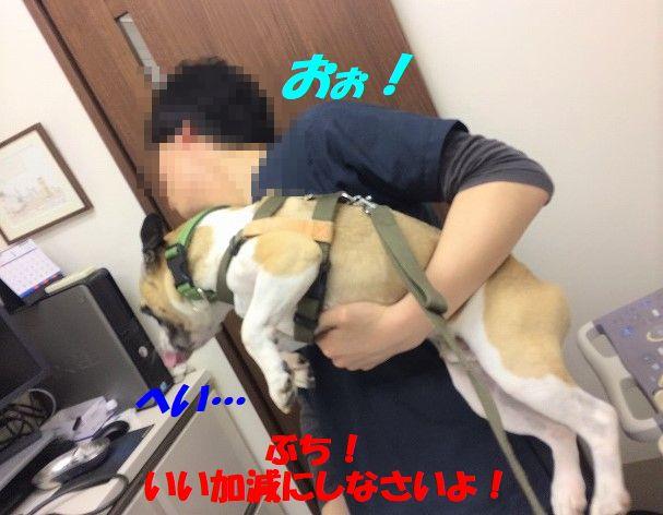 IMG_7134.jpg