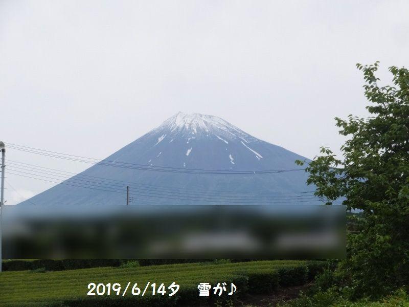 DSCF4339_1_201906142120101ed.jpg
