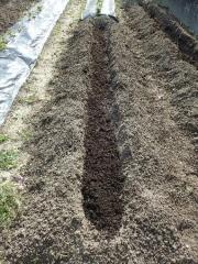 堆肥投入短