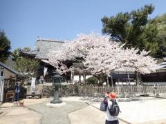 17大日寺