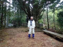 8浄蓮庵の一本杉