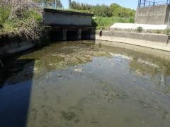 10用水路清掃1