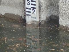 水位約1メートル