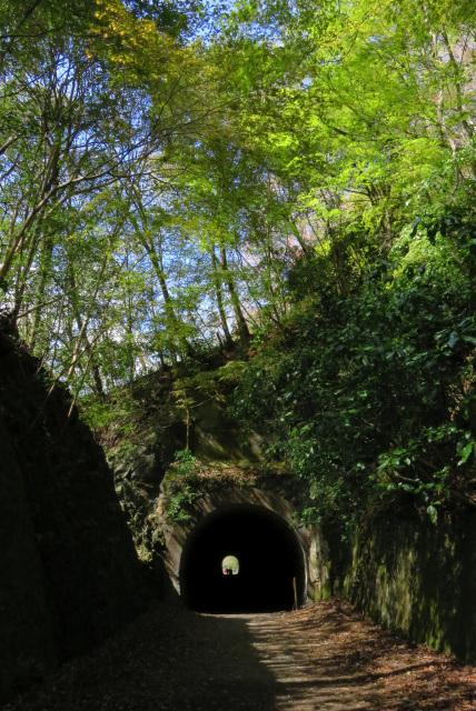 武田尾廃線跡トンネル