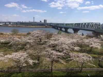 東京4月初め。