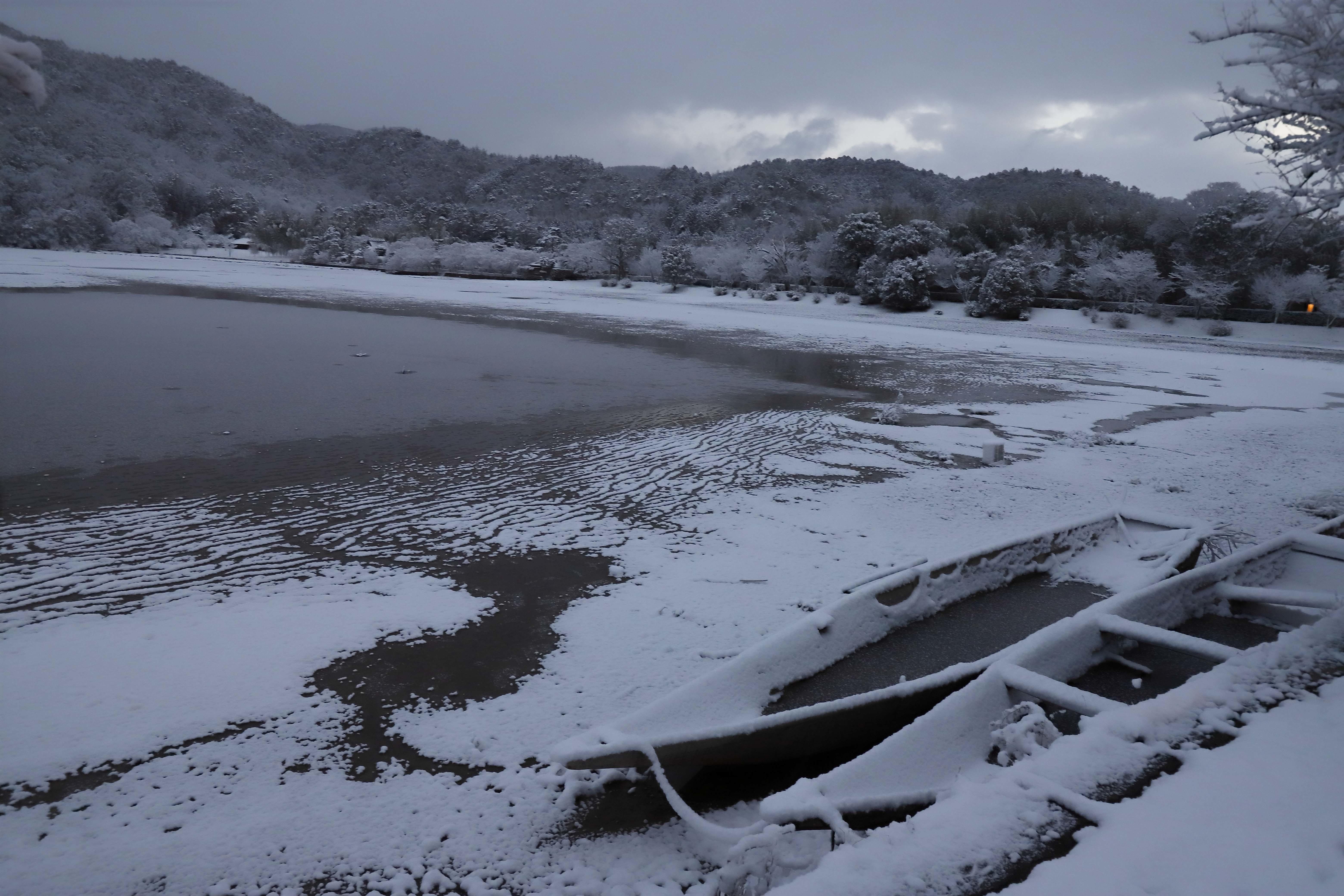 広沢池雪2