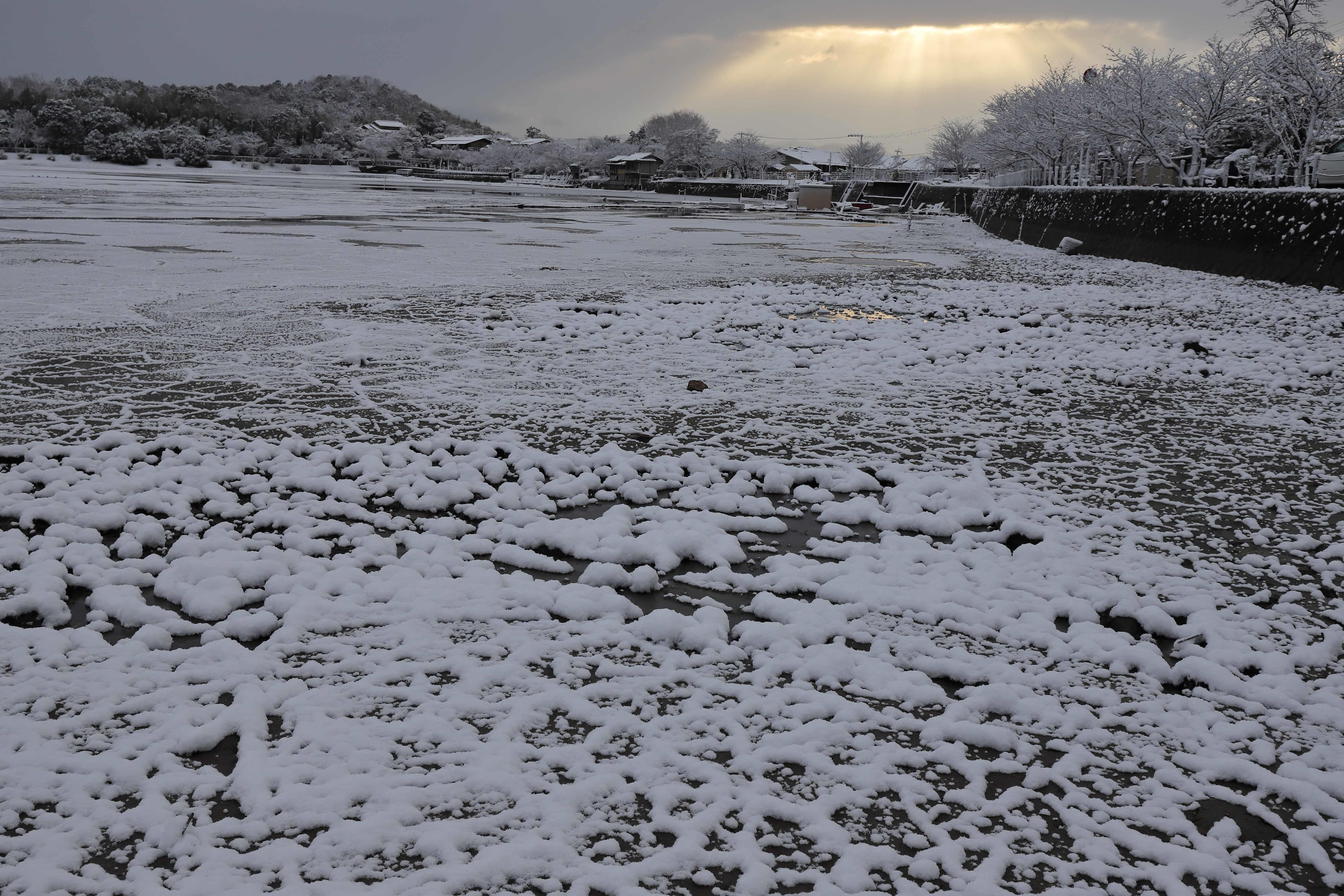 広沢池雪3