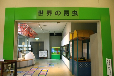 2019-03-10-todagawa-008.jpg