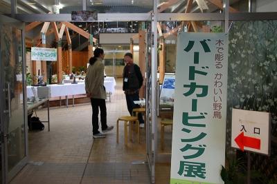 2019-03-10-todagawa-105.jpg