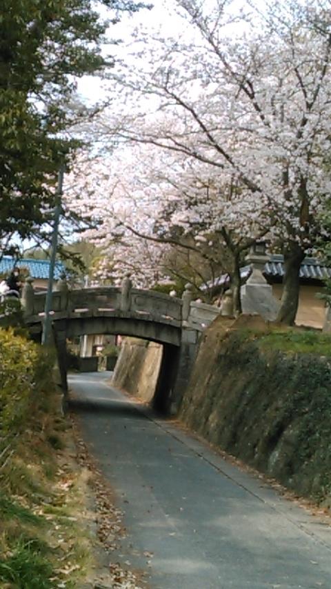 20190331okazu3