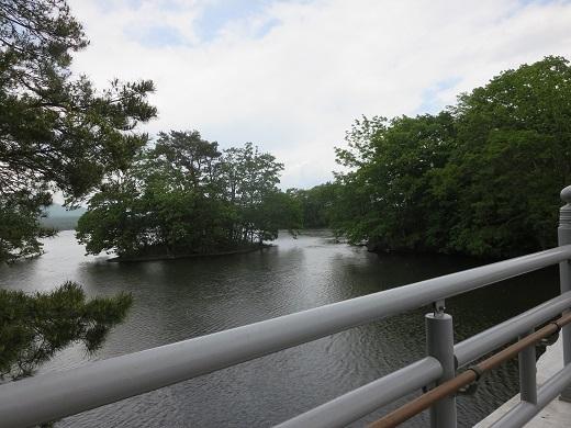 大沼公園の見どころ