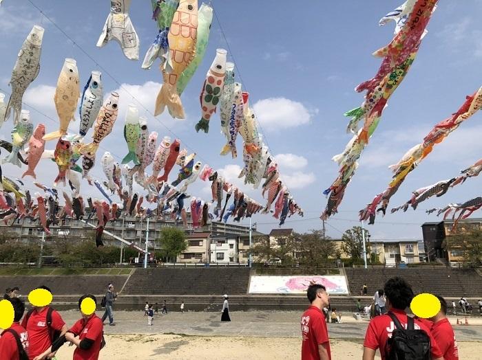2019-04-20こいのぼり4