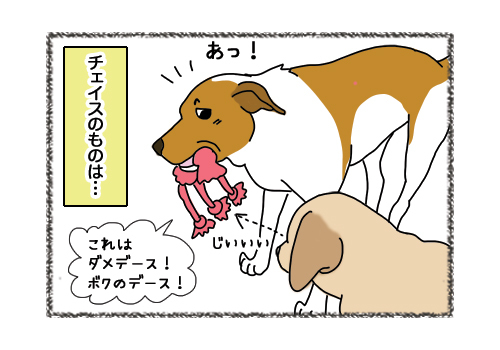 11032019_dog3.jpg