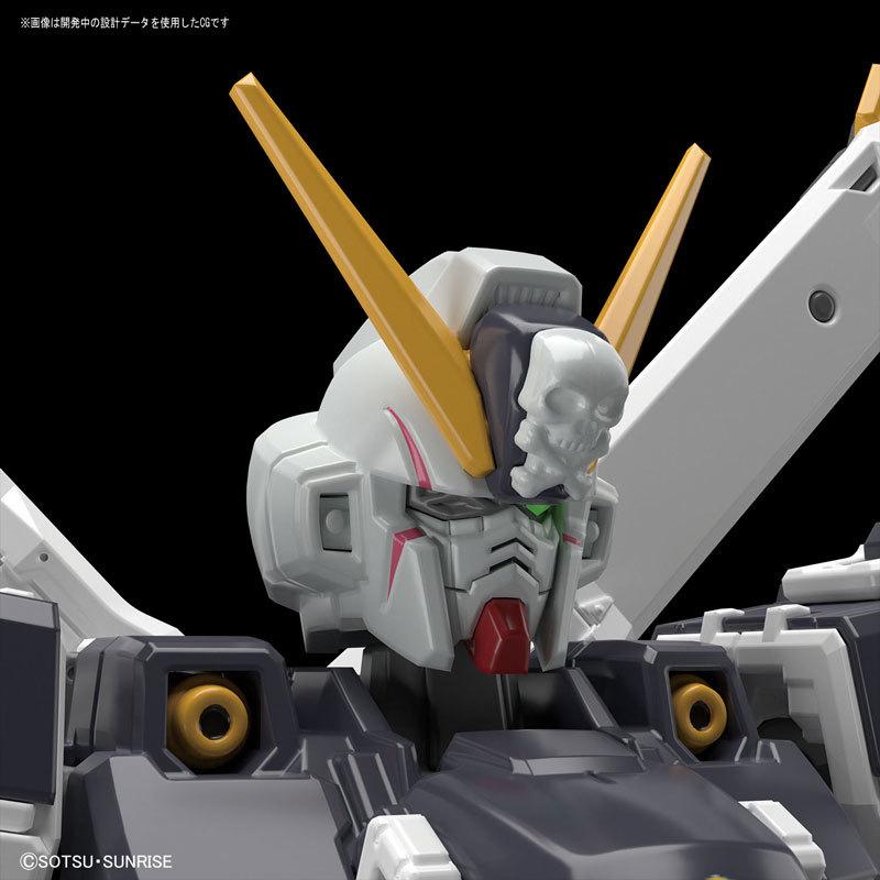 RG 1144 クロスボーン・ガンダムX1 プラモデルTOY-GDM-4105_06